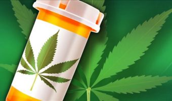 Medical Cannabis Might Provide New Treatment for Pancreatic Cancer Patients